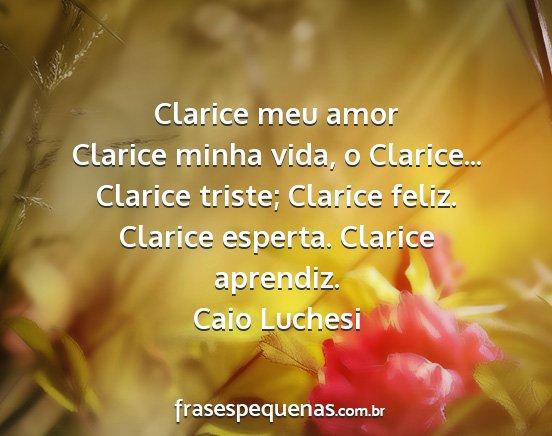 Clarice Meu Amor Clarice Minha Vida O Clarice